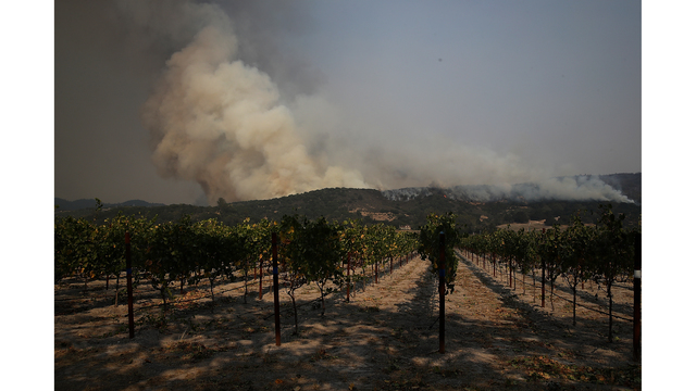 Multiple Wildfires Destroy Homes, Threaten California Wine Country_648246