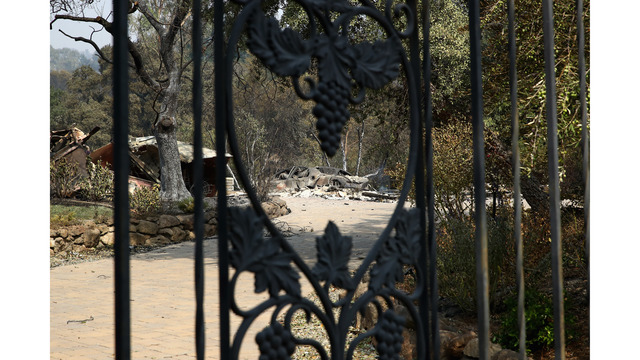 At Least 11 Dead As Multiple Wildfires Burn Through California Wine Country_648237