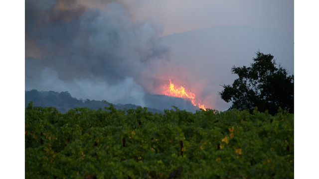 At Least 11 Dead As Multiple Wildfires Burn Through California Wine Country_648226