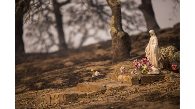 Multiple Wildfires Continue To Ravage Through California Wine Country_648469