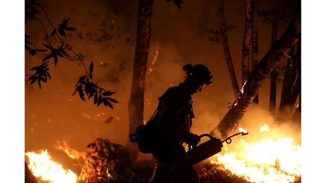 Multiple Wildfires Destroy Homes, Threaten California Wine Country_650003