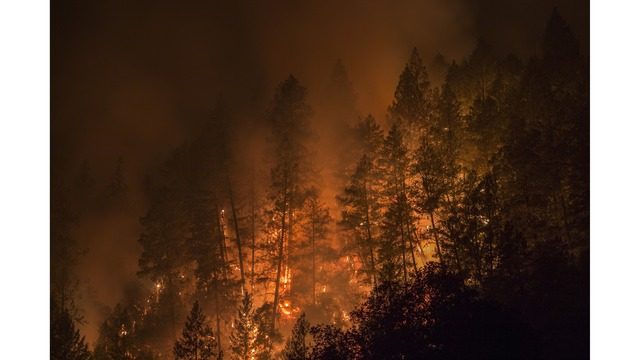 Multiple Wildfires Continue To Ravage Through California Wine Country_650013