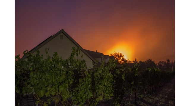 Multiple Wildfires Continue To Ravage Through California Wine Country_651616