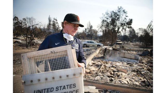 Multiple Wildfires Continue To Ravage California Wine Country_651642