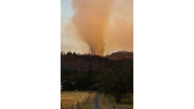 Multiple Wildfires Continue To Ravage California Wine Country_651579