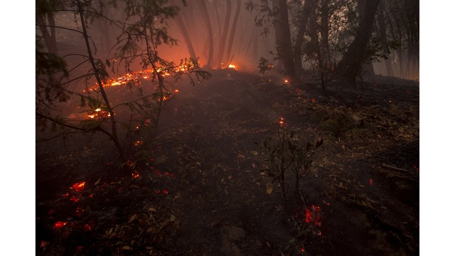 Multiple Wildfires Continue To Ravage Through California Wine Country_651664