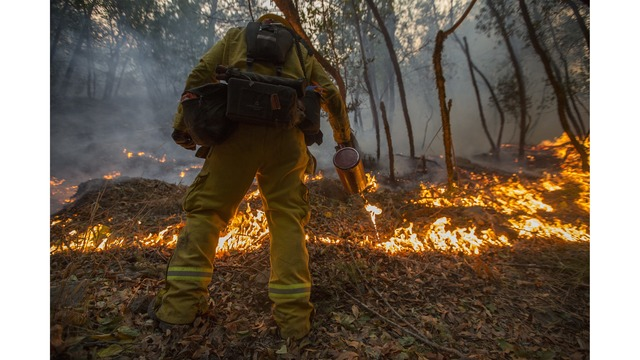 Multiple Wildfires Continue To Ravage Through California Wine Country_651668
