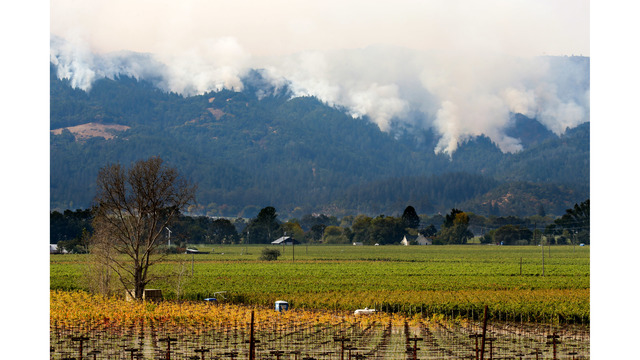Multiple Wildfires Continue To Ravage California Wine Country_652382