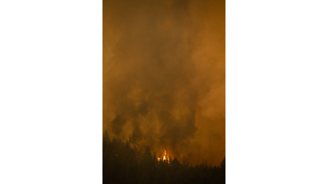 Multiple Wildfires Continue To Ravage California Wine Country_652394
