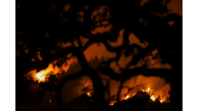 Multiple Wildfires Continue To Ravage California Wine Country_652395