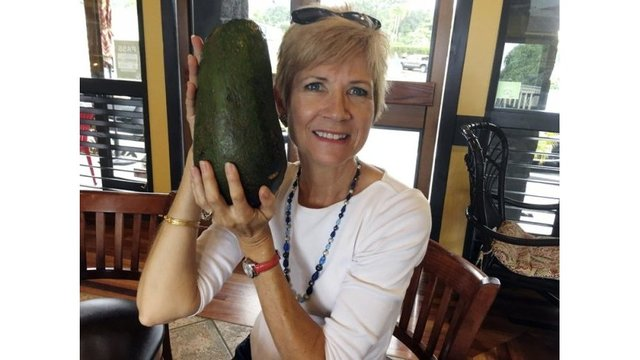 Holy guacamole! Woman seeks new world record for giant avocado