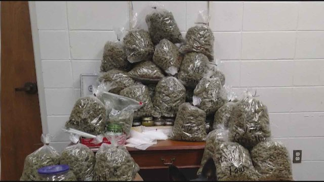 Elderly California couple says 60 pounds of pot was for presents
