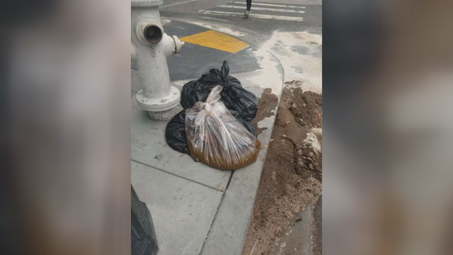 Photo shows '20 pounds of feces' dropped on San Francisco sidewalk