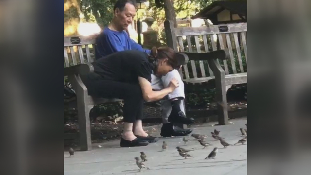 Video shows woman snatching, bagging birds at US park